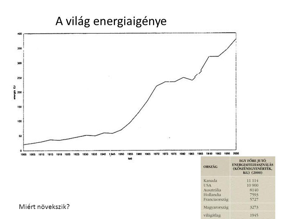 A világ energiaigénye Miért növekszik?