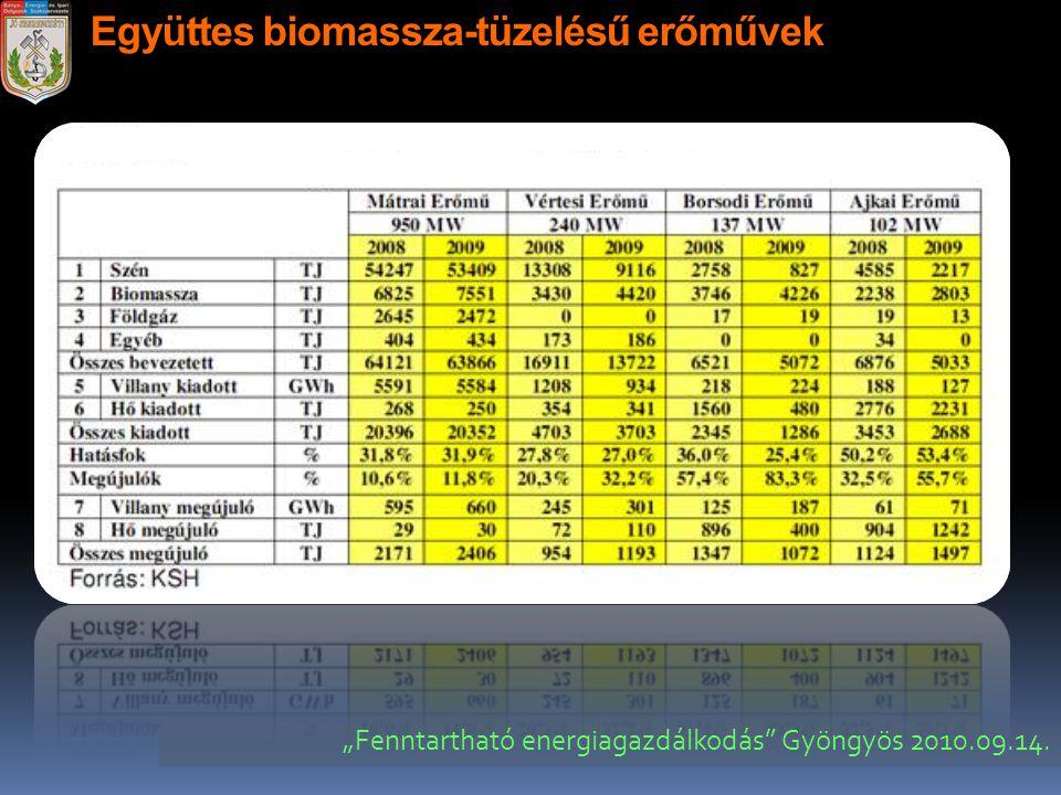 """Együttes biomassza-tüzelésű erőművek """"Fenntartható energiagazdálkodás"""" Gyöngyös 2010.09.14."""