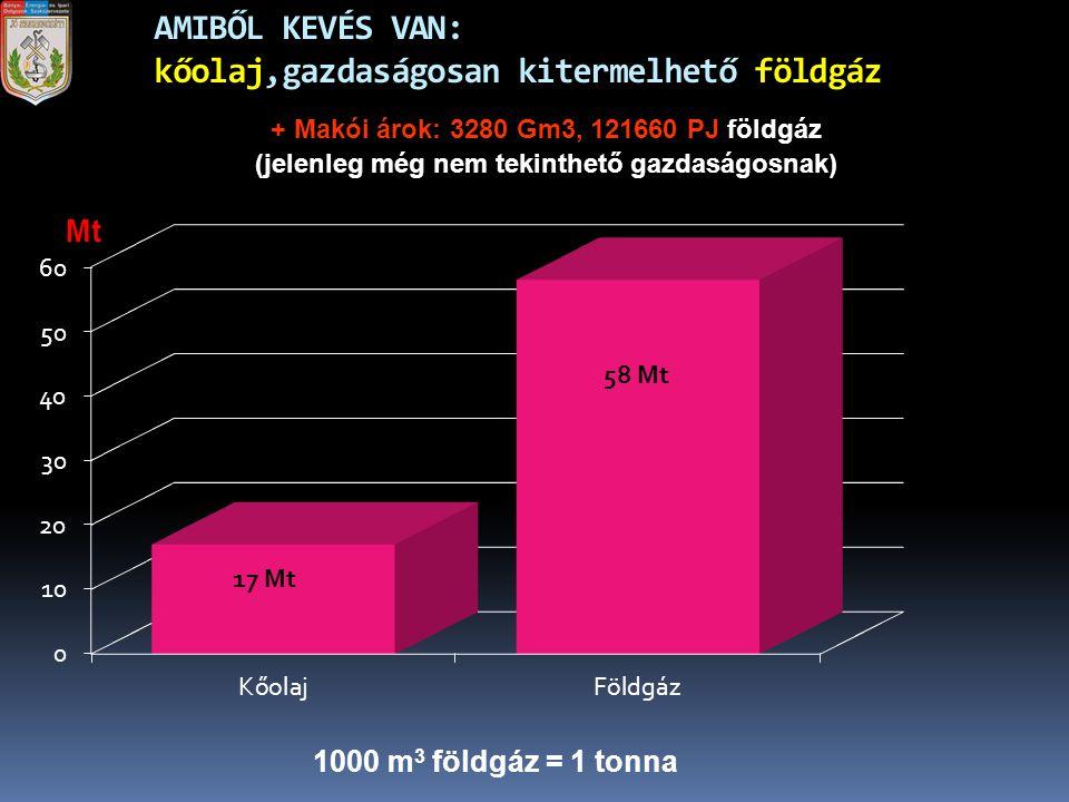 AMIBŐL KEVÉS VAN: kőolaj,gazdaságosan kitermelhető földgáz 1000 m 3 földgáz = 1 tonna Mt + Makói árok: 3280 Gm3, 121660 PJ földgáz (jelenleg még nem t