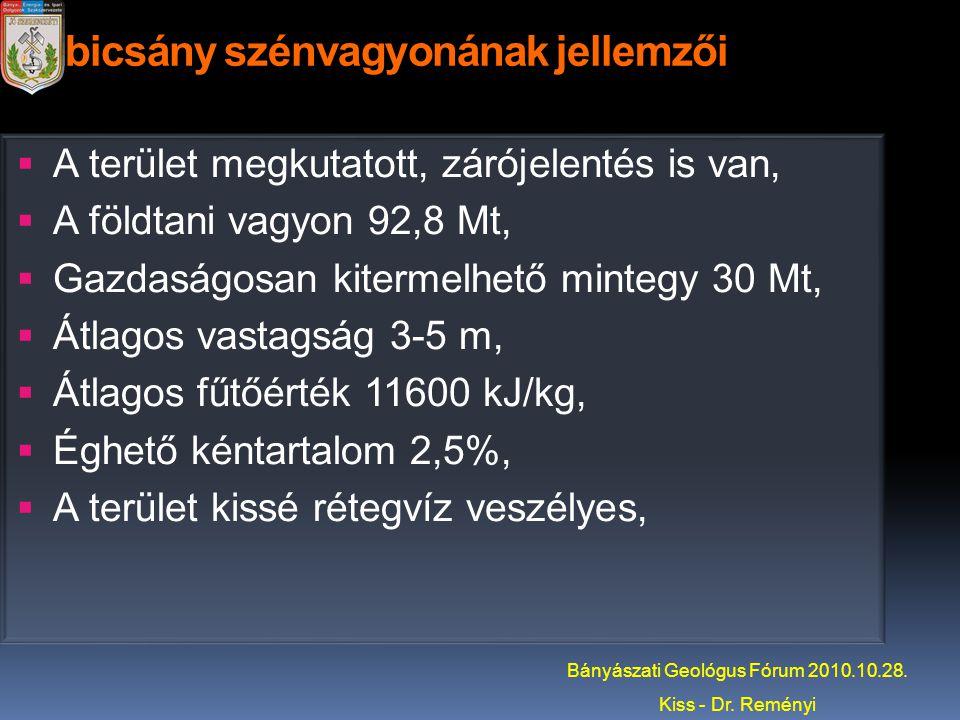 Dubicsány szénvagyonának jellemzői  A terület megkutatott, zárójelentés is van,  A földtani vagyon 92,8 Mt,  Gazdaságosan kitermelhető mintegy 30 M