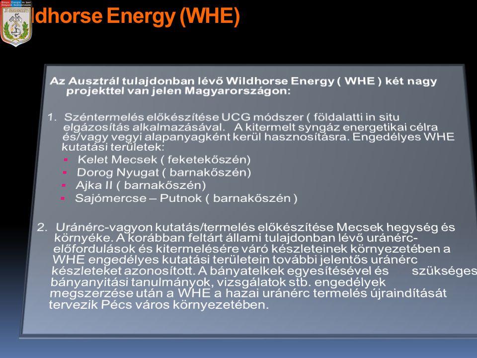 Wildhorse Energy (WHE)