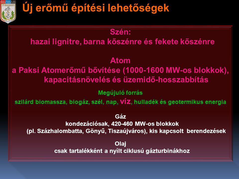 Szén: hazai lignitre, barna kőszénre és fekete kőszénre Atom a Paksi Atomerőmű bővítése (1000-1600 MW-os blokkok), kapacitásnövelés és üzemidő-hosszab