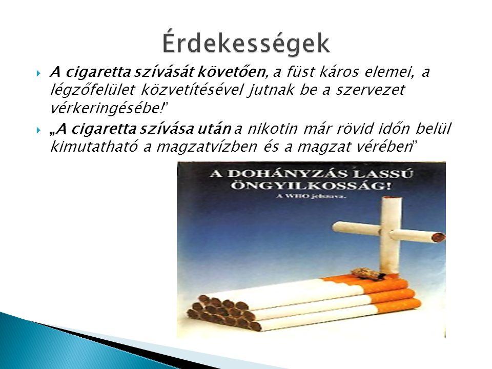""" A cigaretta szívását követően, a füst káros elemei, a légzőfelület közvetítésével jutnak be a szervezet vérkeringésébe!""""  """"A cigaretta szívása után"""