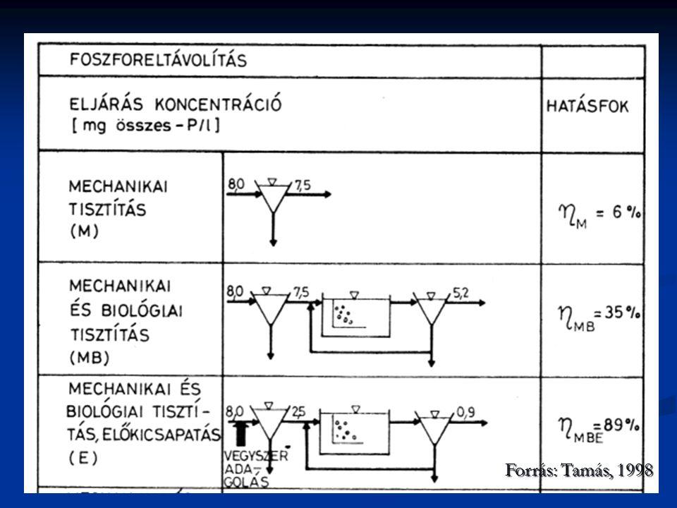 Forrás: Tamás, 1998