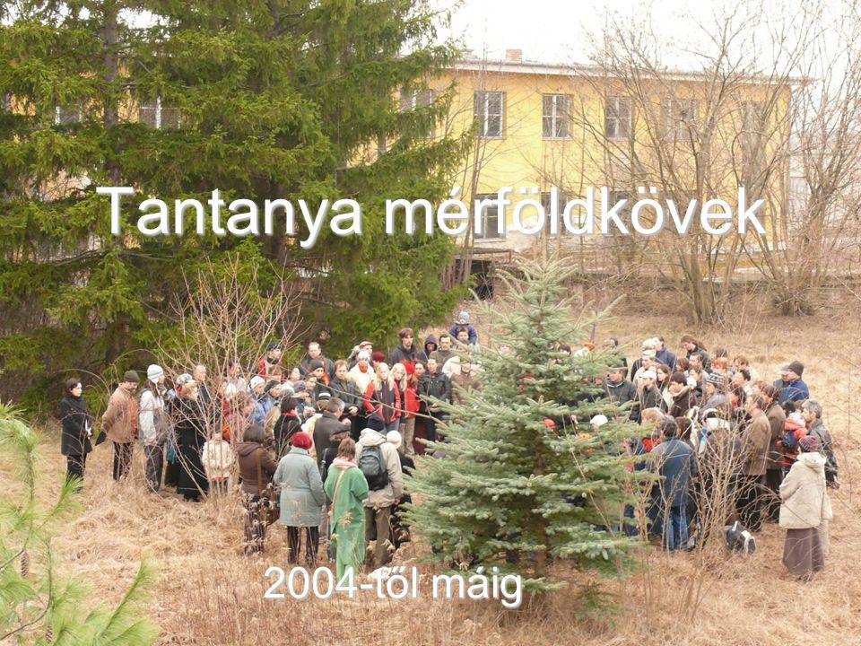 Tantanya mérföldkövek 2004-től máig