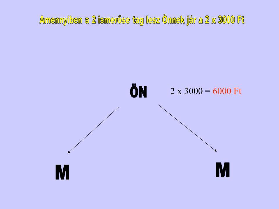 2 x 3000 = 6000 Ft