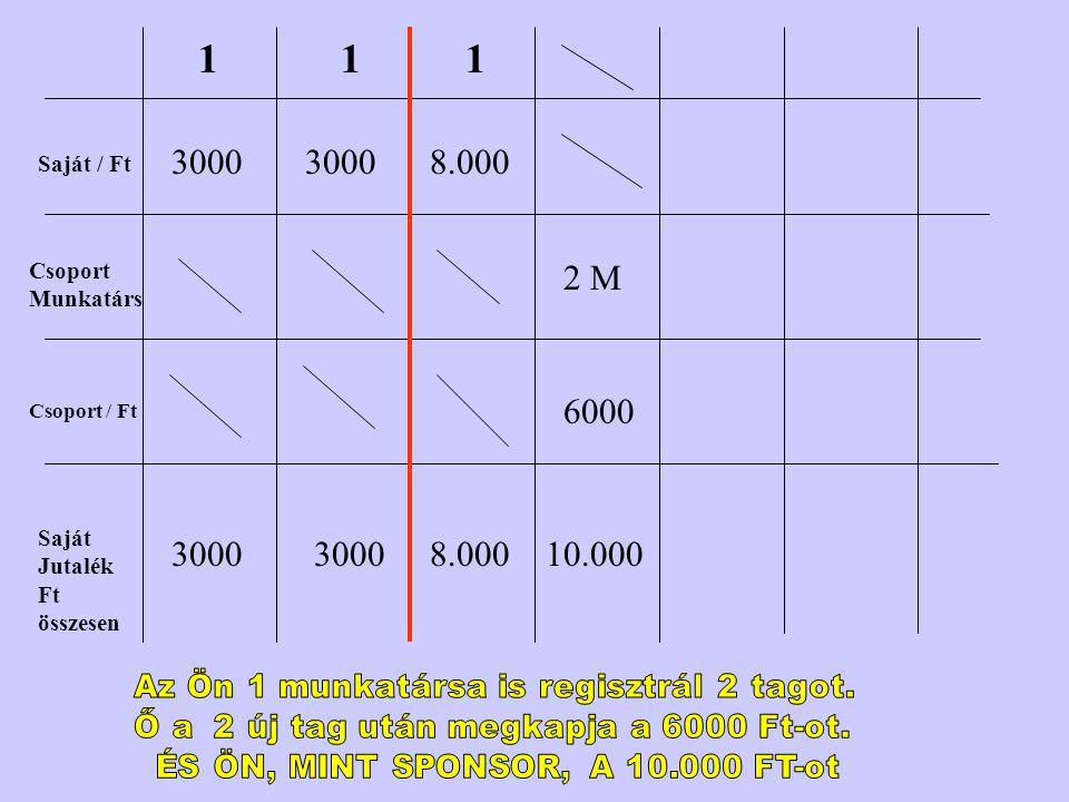 Saját / Ft Csoport Munkatárs Csoport / Ft Saját Jutalék Ft összesen 1 3000 1 1 8.000 2 M 6000 10.000