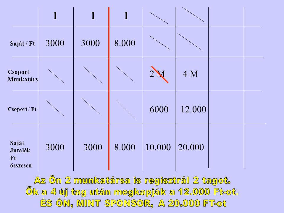 Saját / Ft Csoport Munkatárs Csoport / Ft Saját Jutalék Ft összesen 1 3000 1 1 8.000 2 M 6000 10.000 4 M 12.000 20.000
