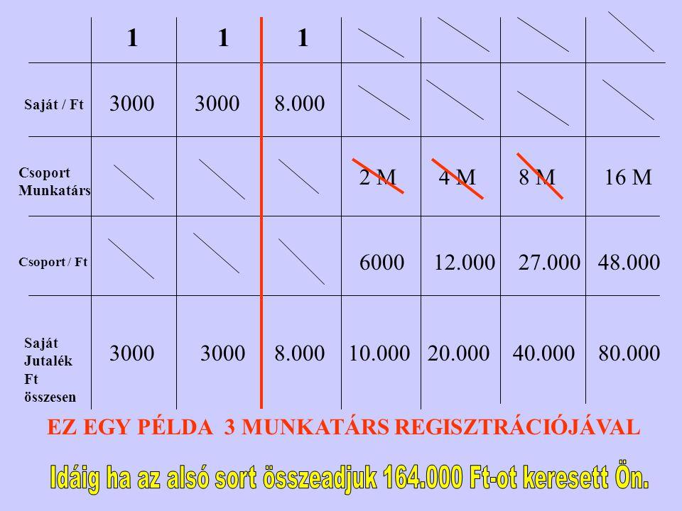 Saját / Ft Csoport Munkatárs Csoport / Ft Saját Jutalék Ft összesen 1 3000 1 1 8.000 2 M 6000 10.000 4 M 12.000 20.000 8 M 27.000 40.000 16 M 48.000 80.000 EZ EGY PÉLDA 3 MUNKATÁRS REGISZTRÁCIÓJÁVAL