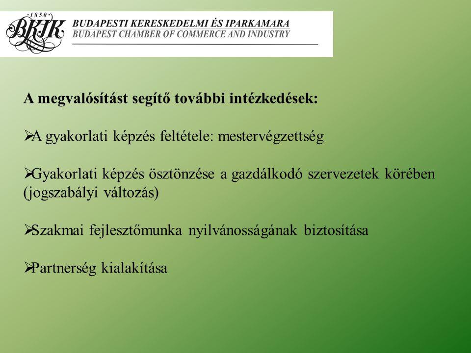 A megvalósítást segítő további intézkedések:  A gyakorlati képzés feltétele: mestervégzettség  Gyakorlati képzés ösztönzése a gazdálkodó szervezetek körében (jogszabályi változás)  Szakmai fejlesztőmunka nyilvánosságának biztosítása  Partnerség kialakítása