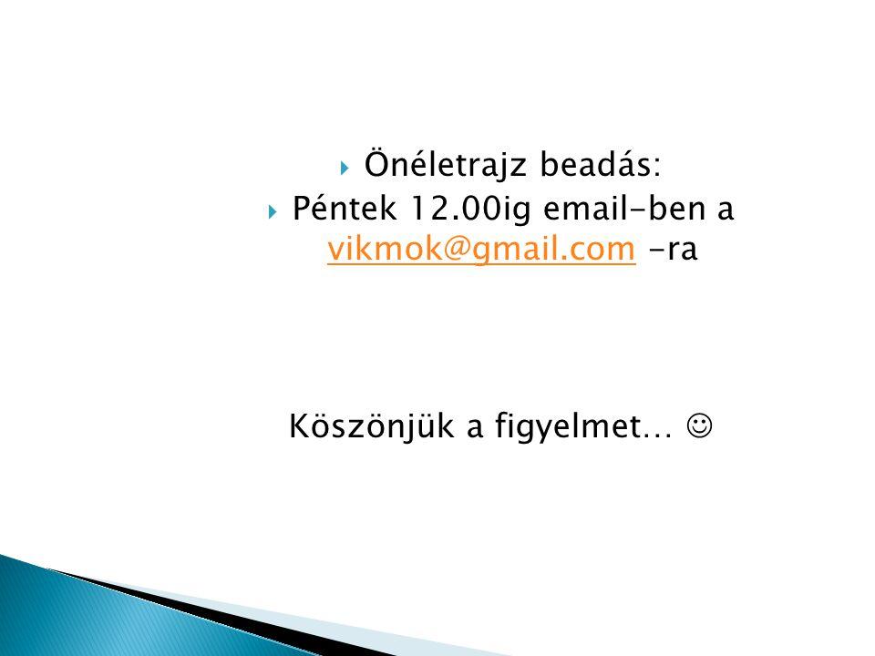  Önéletrajz beadás:  Péntek 12.00ig email-ben a vikmok@gmail.com -ra vikmok@gmail.com Köszönjük a figyelmet…