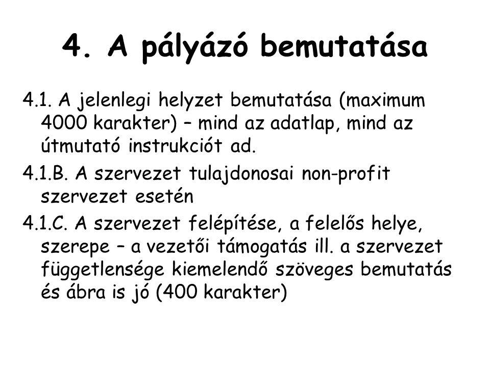 4.A pályázó bemutatása 4.1.