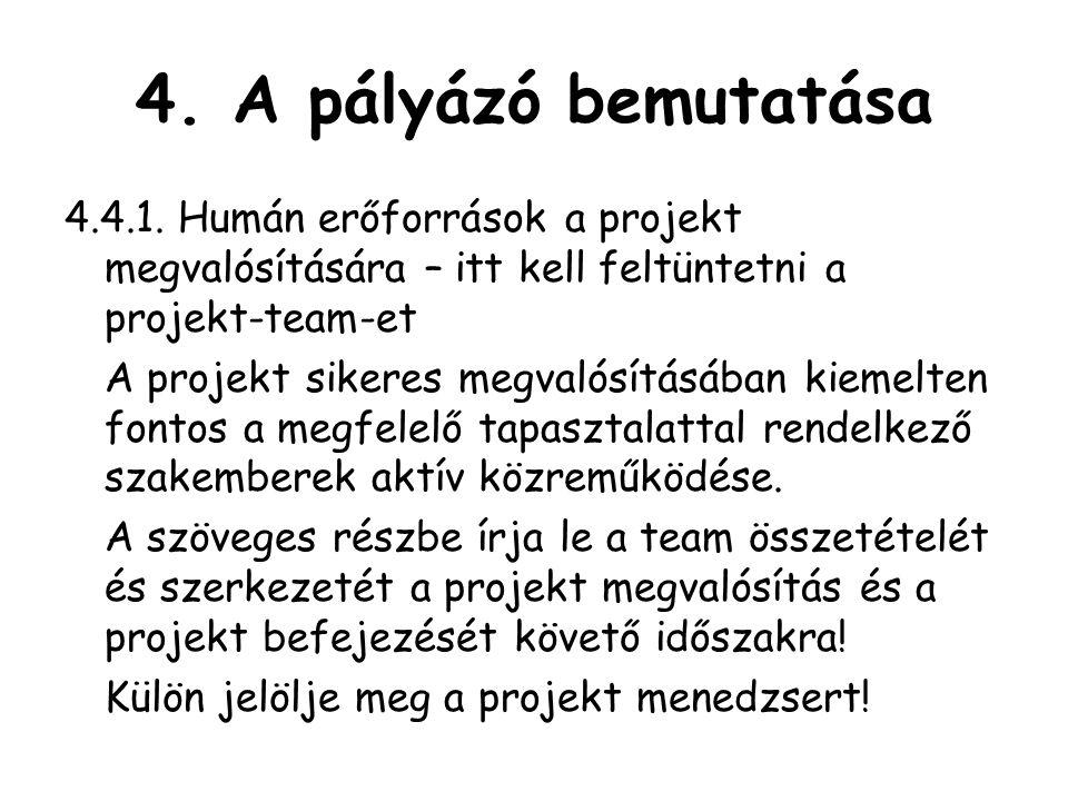 4.A pályázó bemutatása 4.4.1.