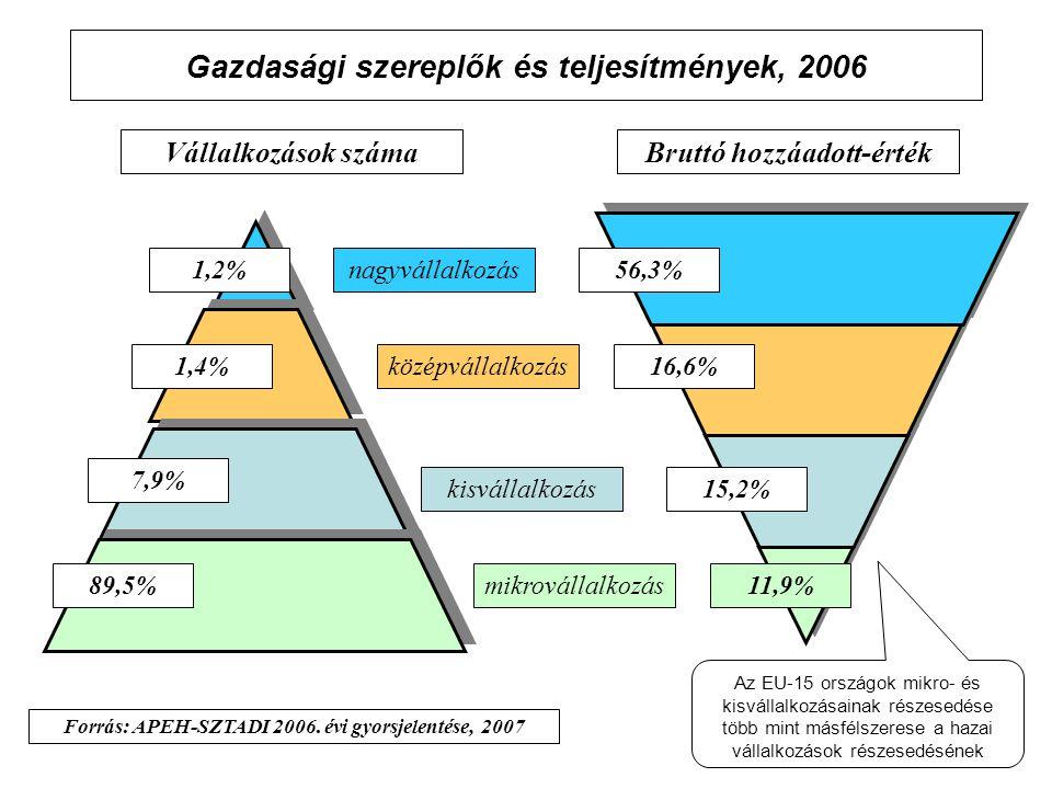 Gazdasági szereplők és teljesítmények, 2006 Vállalkozások számaBruttó hozzáadott-érték 1,2%nagyvállalkozás középvállalkozás kisvállalkozás mikrovállalkozás11,9% 1,4% 7,9% 89,5% 15,2% 16,6% 56,3% Forrás: APEH-SZTADI 2006.