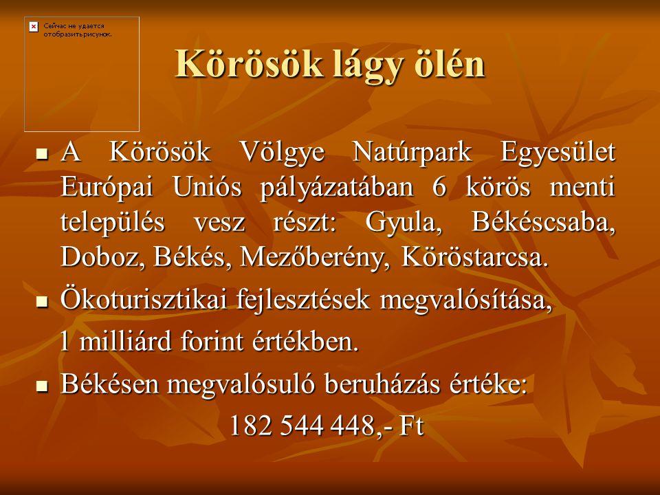 Körösök lágy ölén A Körösök Völgye Natúrpark Egyesület Európai Uniós pályázatában 6 körös menti település vesz részt: Gyula, Békéscsaba, Doboz, Békés,