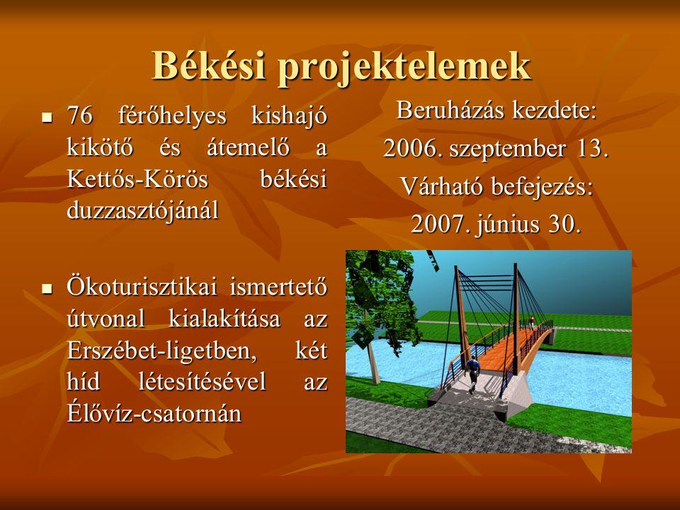 Békési projektelemek 76 férőhelyes kishajó kikötő és átemelő a Kettős-Körös békési duzzasztójánál 76 férőhelyes kishajó kikötő és átemelő a Kettős-Kör