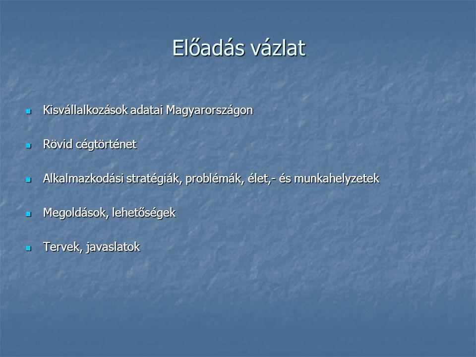 Előadás vázlat Kisvállalkozások adatai Magyarországon Kisvállalkozások adatai Magyarországon Rövid cégtörténet Rövid cégtörténet Alkalmazkodási stratégiák, problémák, élet,- és munkahelyzetek Alkalmazkodási stratégiák, problémák, élet,- és munkahelyzetek Megoldások, lehetőségek Megoldások, lehetőségek Tervek, javaslatok Tervek, javaslatok