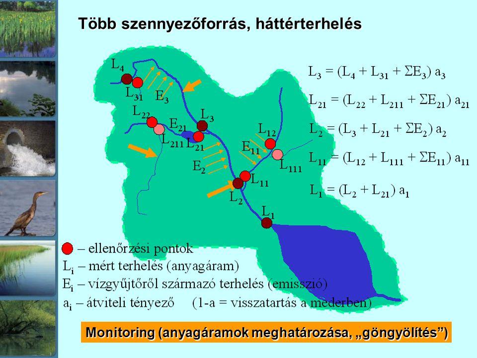 """Több szennyezőforrás, háttérterhelés Monitoring (anyagáramok meghatározása, """"göngyölítés"""")"""
