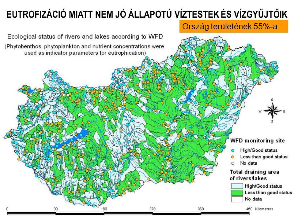 Vízminőségi modell paraméterezése