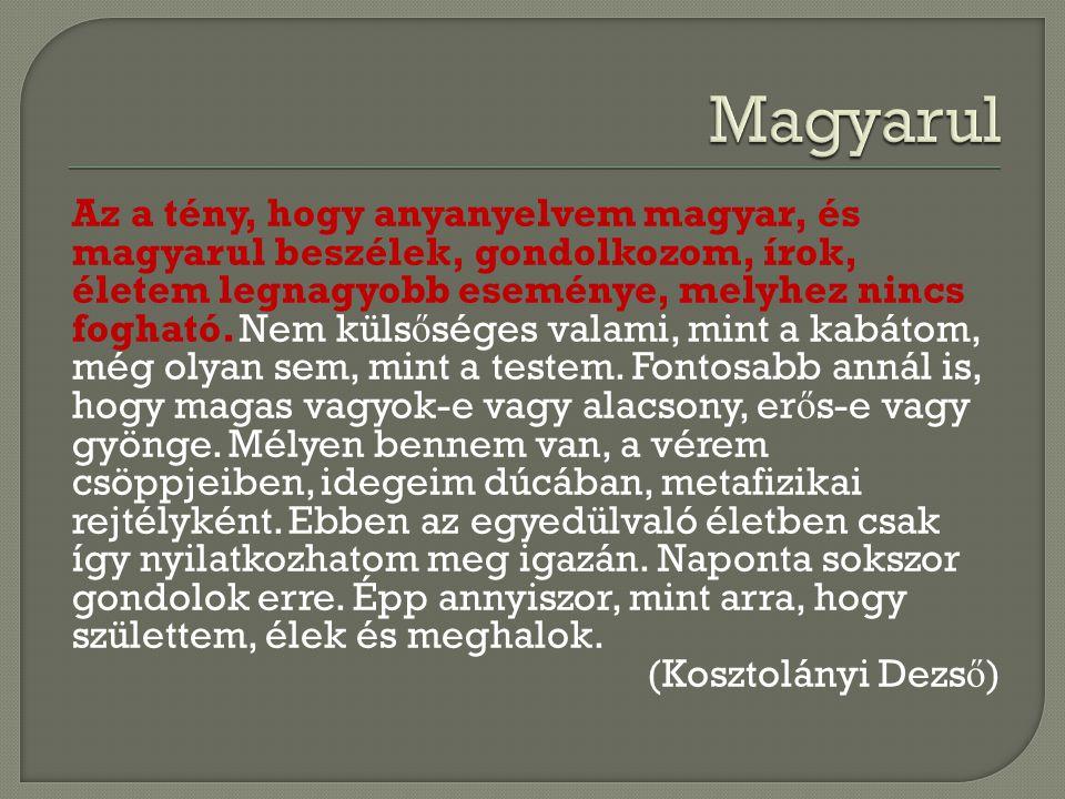 Az a tény, hogy anyanyelvem magyar, és magyarul beszélek, gondolkozom, írok, életem legnagyobb eseménye, melyhez nincs fogható. Nem küls ő séges valam