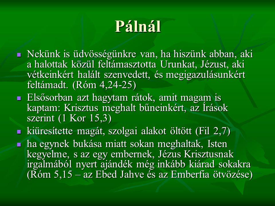 Pálnál Nekünk is üdvösségünkre van, ha hiszünk abban, aki a halottak közül feltámasztotta Urunkat, Jézust, aki vétkeinkért halált szenvedett, és megigazulásunkért feltámadt.