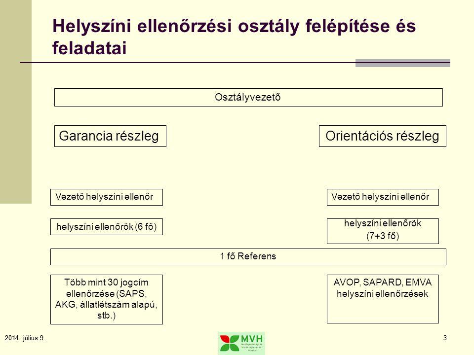 2014. július 9.3 3 Helyszíni ellenőrzési osztály felépítése és feladatai Osztályvezető Garancia részlegOrientációs részleg Vezető helyszíni ellenőr he