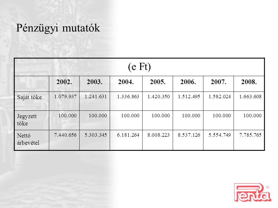 Pénzügyi mutatók (e Ft) 2002.2003.2004.2005.2006.2007.2008.