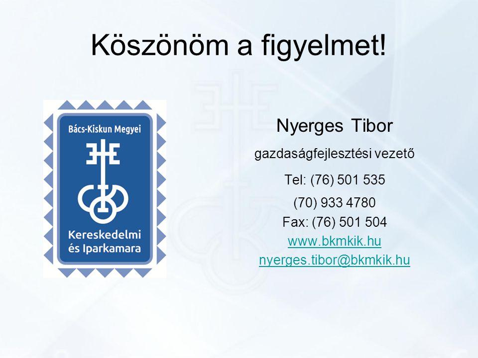 Köszönöm a figyelmet! Nyerges Tibor gazdaságfejlesztési vezető Tel: (76) 501 535 (70) 933 4780 Fax: (76) 501 504 www.bkmkik.hu nyerges.tibor@bkmkik.hu