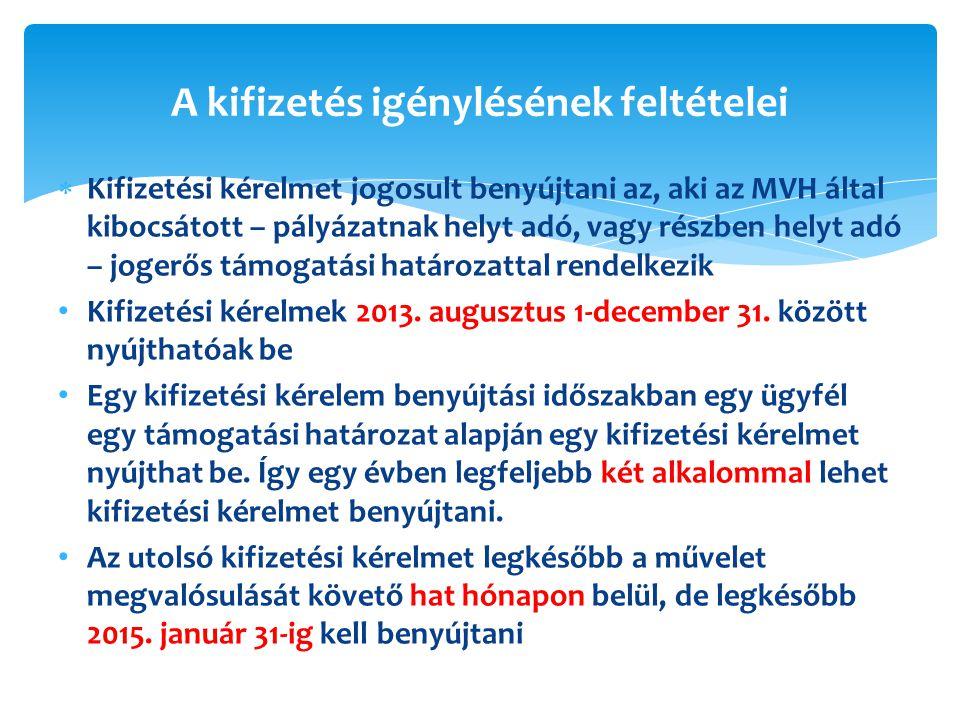  Kifizetési kérelmet jogosult benyújtani az, aki az MVH által kibocsátott – pályázatnak helyt adó, vagy részben helyt adó – jogerős támogatási határozattal rendelkezik Kifizetési kérelmek 2013.