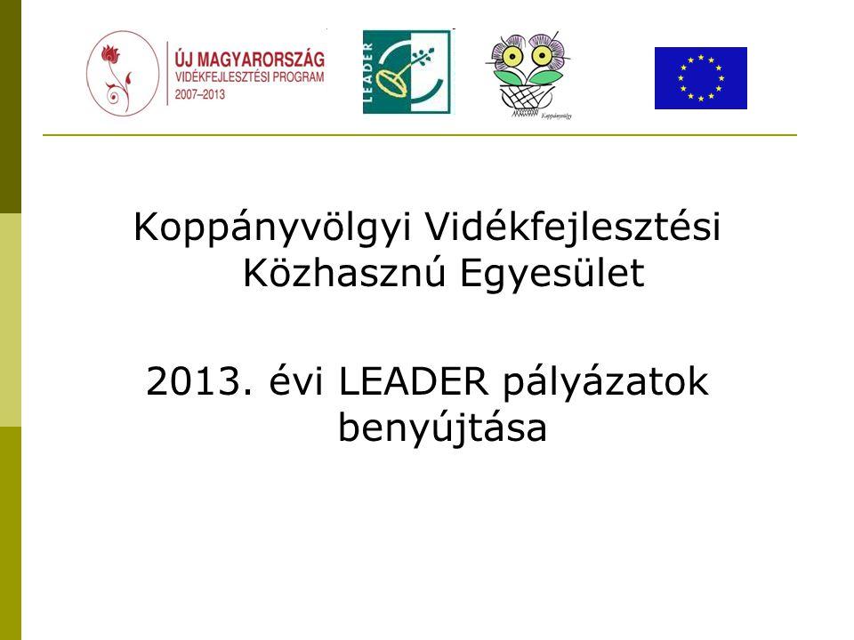 Koppányvölgyi Vidékfejlesztési Közhasznú Egyesület 2013. évi LEADER pályázatok benyújtása