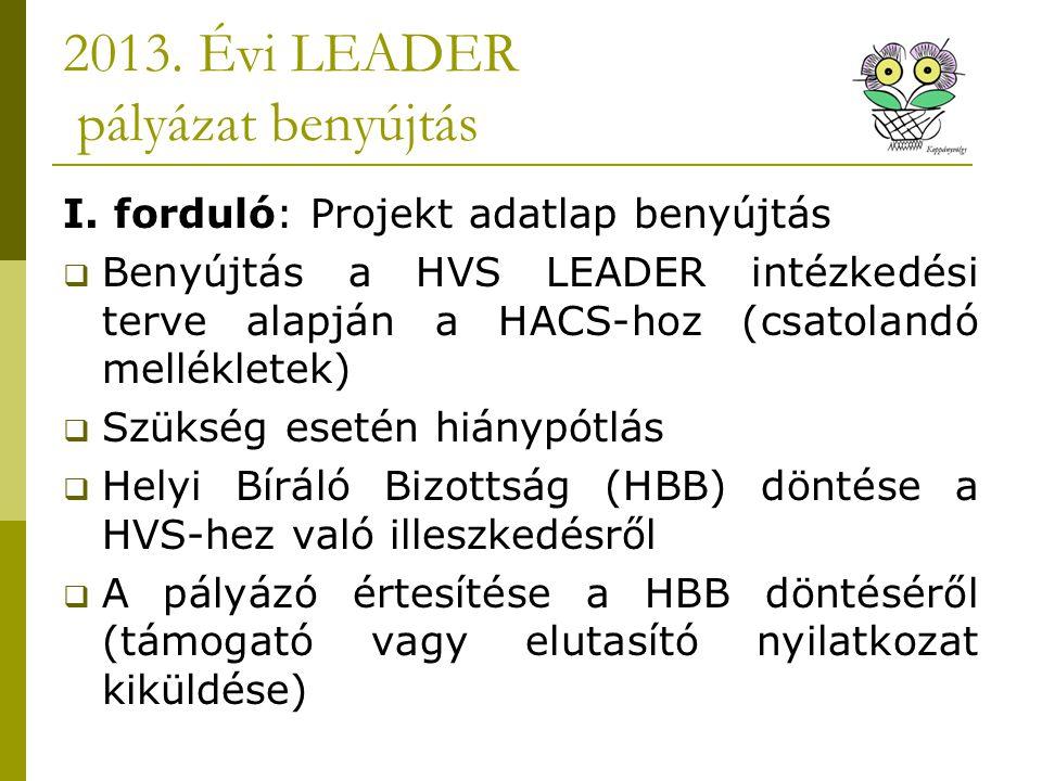 2013. Évi LEADER pályázat benyújtás I.