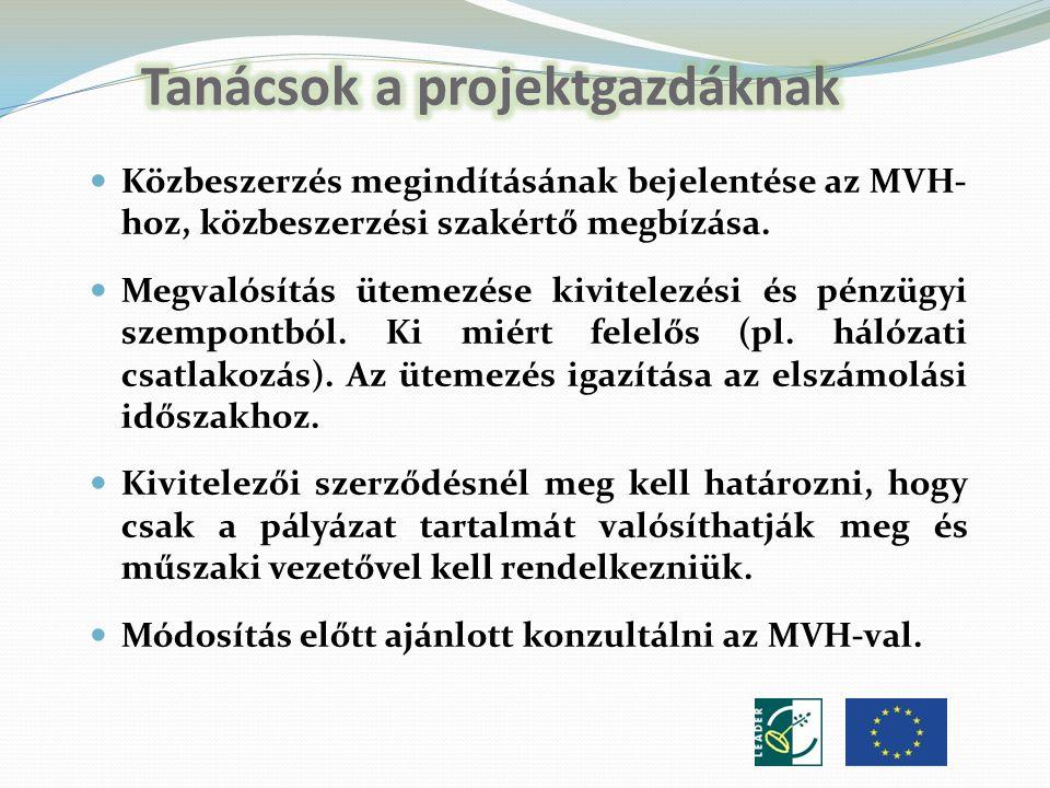Közbeszerzés megindításának bejelentése az MVH- hoz, közbeszerzési szakértő megbízása.