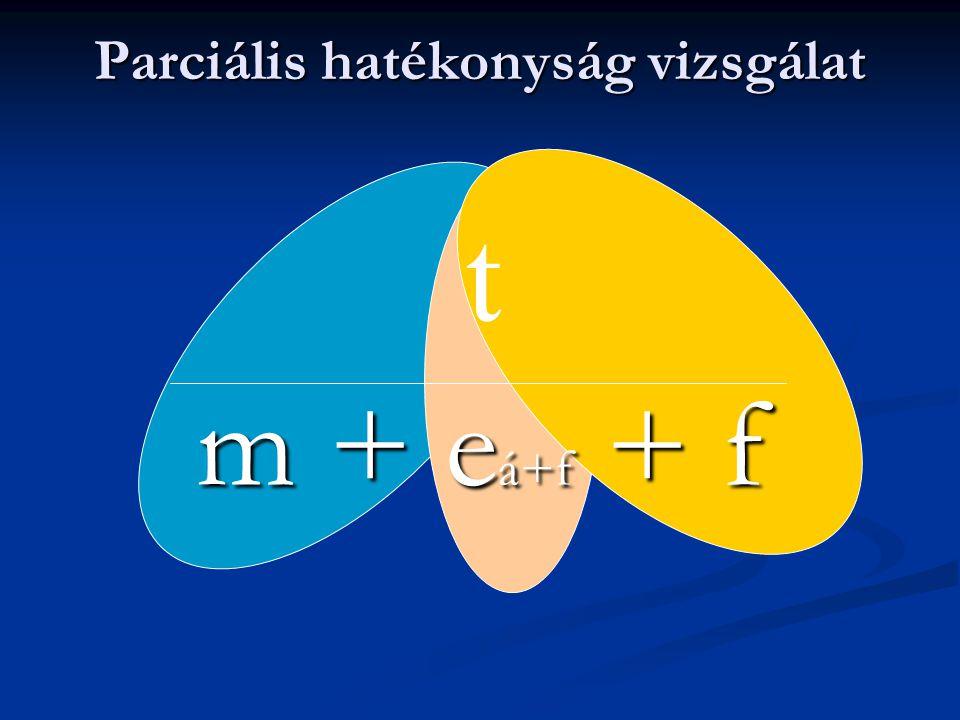 Parciális hatékonyság vizsgálat m + e á+f + f t