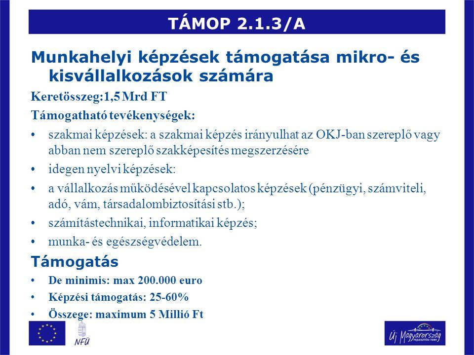 TÁMOP 2.1.3/A Munkahelyi képzések támogatása mikro- és kisvállalkozások számára Keretösszeg:1,5 Mrd FT Támogatható tevékenységek: szakmai képzések: a szakmai képzés irányulhat az OKJ-ban szereplő vagy abban nem szereplő szakképesítés megszerzésére idegen nyelvi képzések: a vállalkozás működésével kapcsolatos képzések (pénzügyi, számviteli, adó, vám, társadalombiztosítási stb.); számítástechnikai, informatikai képzés; munka- és egészségvédelem.