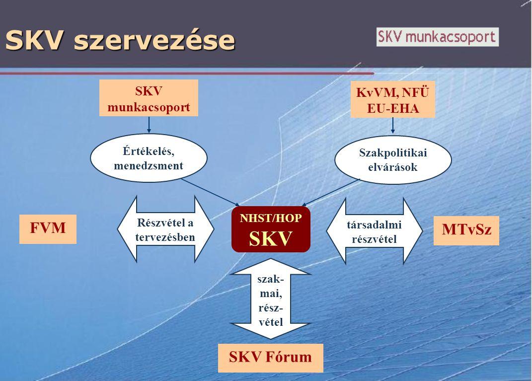 SKV szervezése FVM NHST/HOP SKV Értékelés, menedzsment SKV munkacsoport Részvétel a tervezésben KvVM, NFÜ EU-EHA Szakpolitikai elvárások SKV Fórum szak- mai, rész- vétel társadalmi részvétel MTvSz