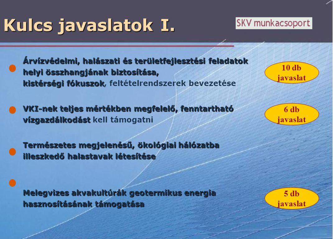 Kulcs javaslatok I. Árvízvédelmi, halászati és területfejlesztési feladatok helyi összhangjának biztosítása, kistérségi fókuszok Árvízvédelmi, halásza