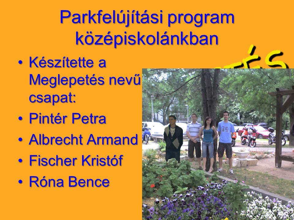 Parkfelújítási program középiskolánkban Készítette a Meglepetés nevű csapat:Készítette a Meglepetés nevű csapat: Pintér PetraPintér Petra Albrecht Arm