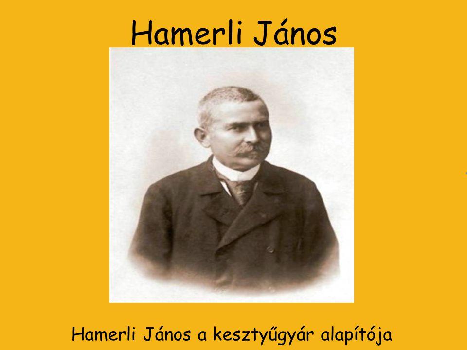 Hamerli János Hamerli János a kesztyűgyár alapítója