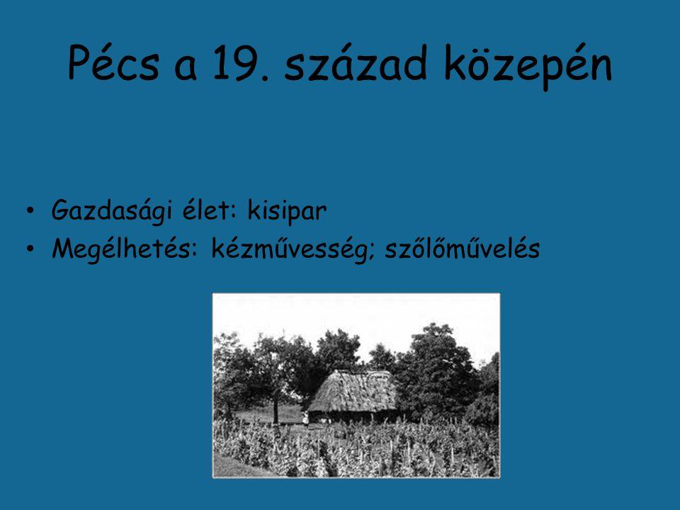Pécs a 19. század közepén Gazdasági élet: kisipar Megélhetés: kézművesség; szőlőművelés