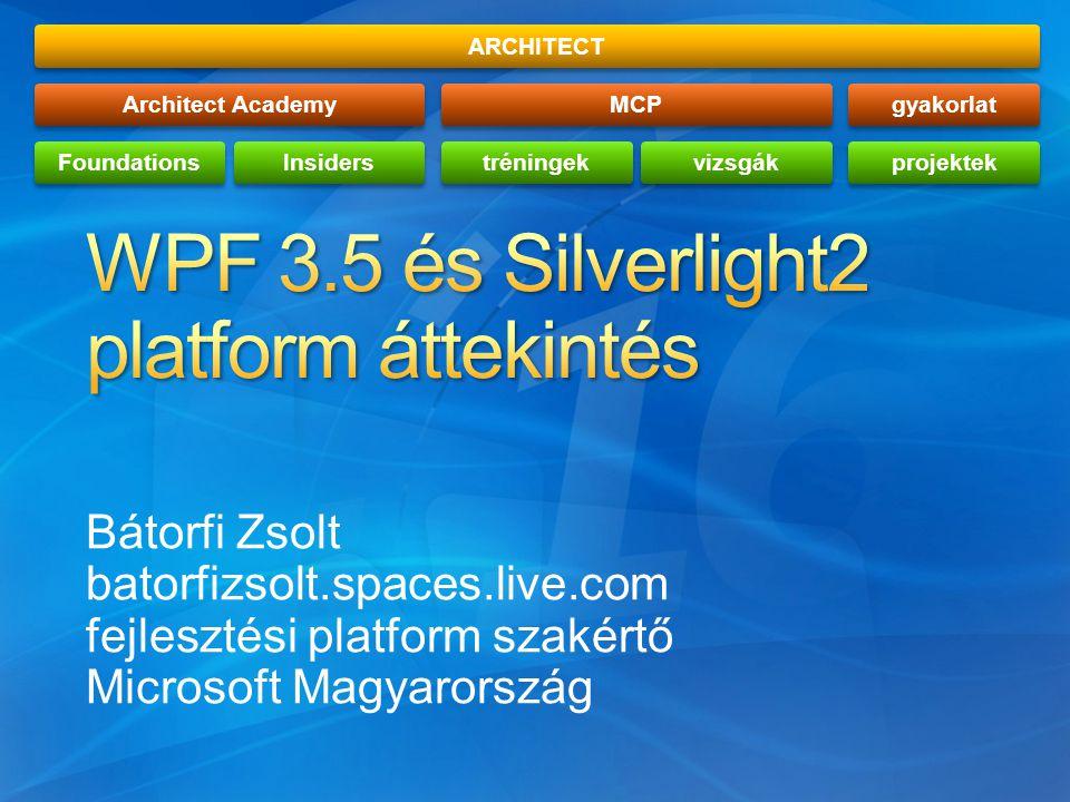 Bátorfi Zsolt batorfizsolt.spaces.live.com fejlesztési platform szakértő Microsoft Magyarország