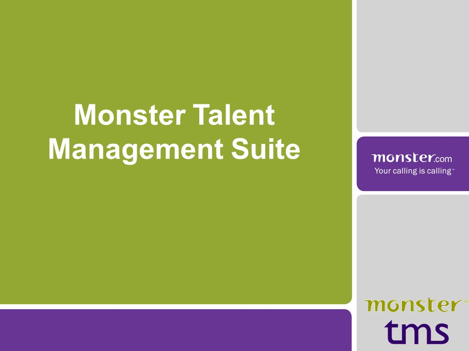 Monster Talent Management Suite