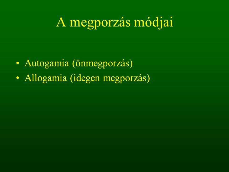 A megporzás módjai Autogamia (önmegporzás) Allogamia (idegen megporzás)