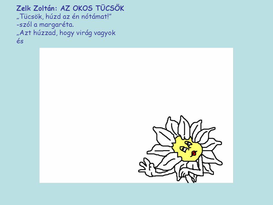 """Zelk Zoltán: AZ OKOS TÜCSÖK """"Tücsök, húzd az én nótámat!"""" -szól a margaréta. """"Azt húzzad, hogy virág vagyok"""