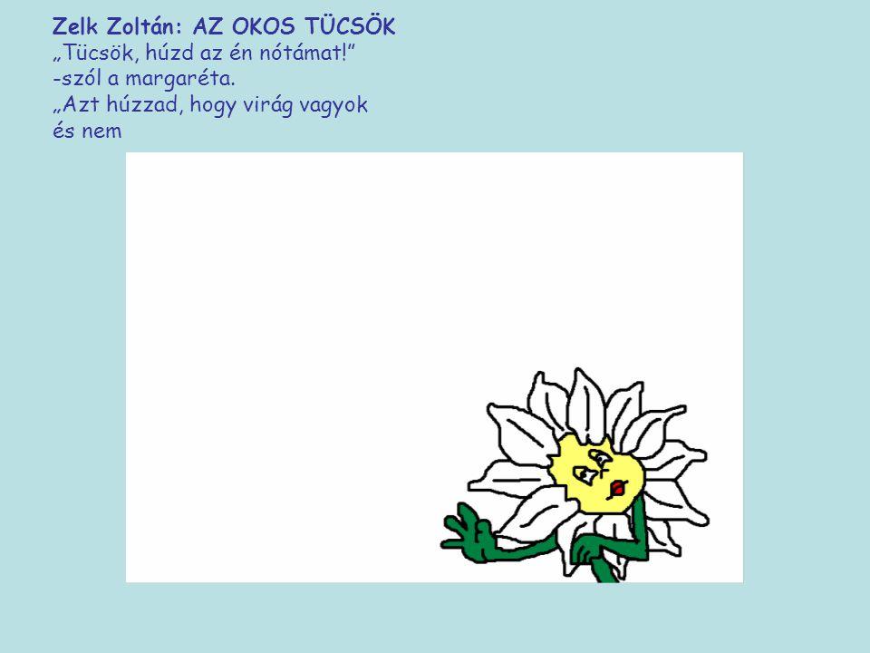 """Zelk Zoltán: AZ OKOS TÜCSÖK """"Tücsök, húzd az én nótámat!"""" -szól a margaréta. """"Azt húzzad, hogy virág vagyok és"""