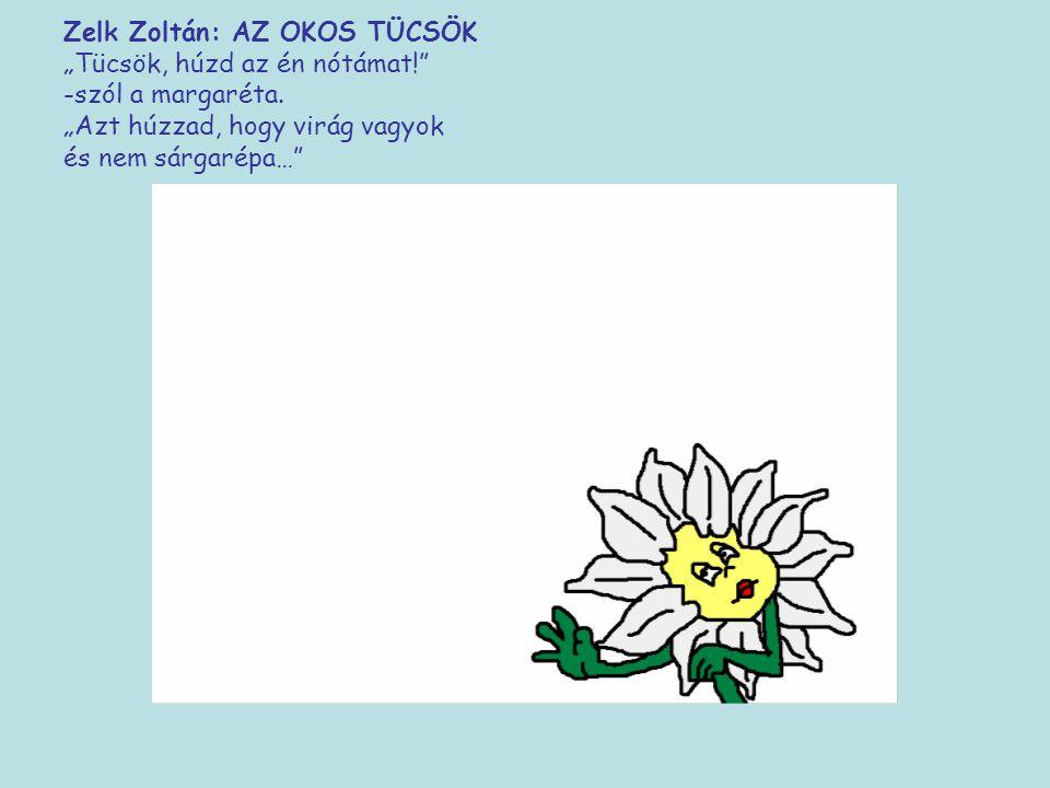 """Zelk Zoltán: AZ OKOS TÜCSÖK """"Tücsök, húzd az én nótámat!"""" -szól a margaréta. """"Azt húzzad, hogy virág vagyok és nem"""