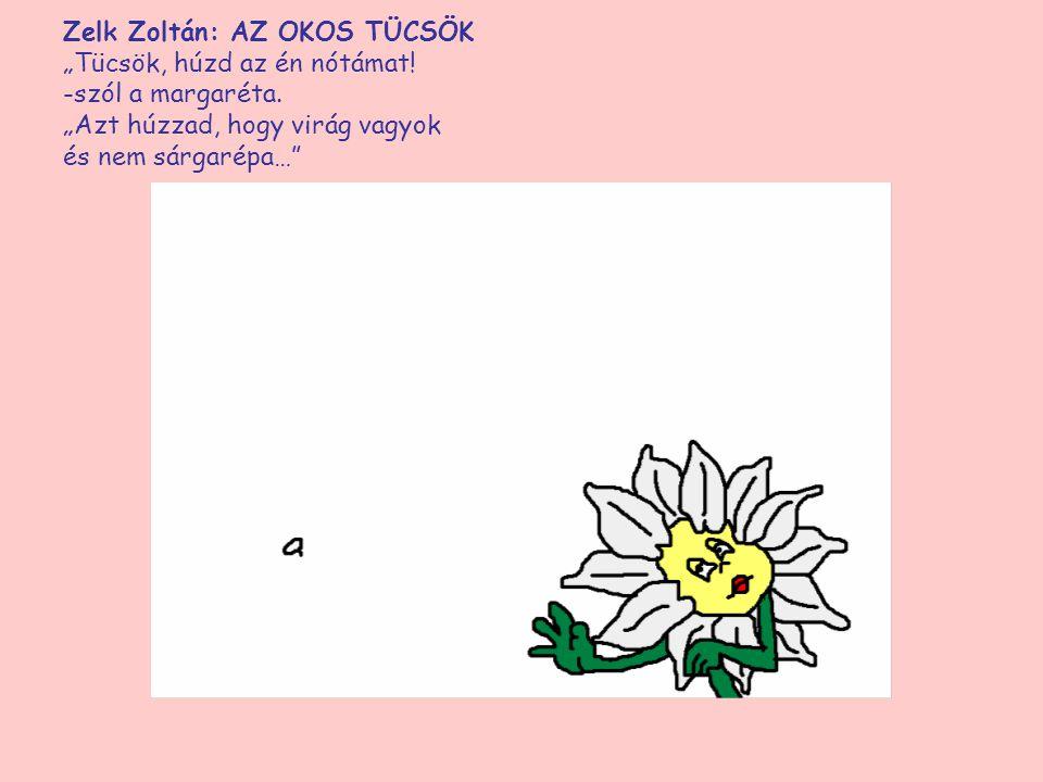 """Zelk Zoltán: AZ OKOS TÜCSÖK """"Tücsök, húzd az én nótámat!"""" -szól a margaréta. """"Azt húzzad, hogy virág vagyok és nem sárgarépa…"""""""