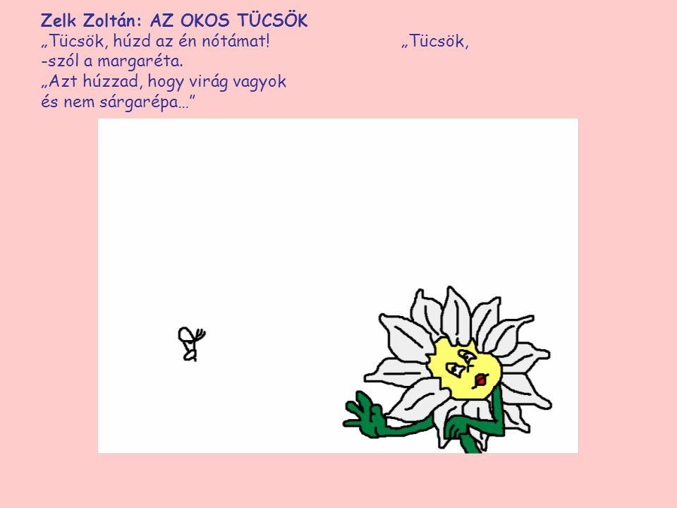 """Zelk Zoltán: AZ OKOS TÜCSÖK """"Tücsök, húzd az én nótámat! -szól a margaréta. """"Azt húzzad, hogy virág vagyok és nem sárgarépa…"""""""