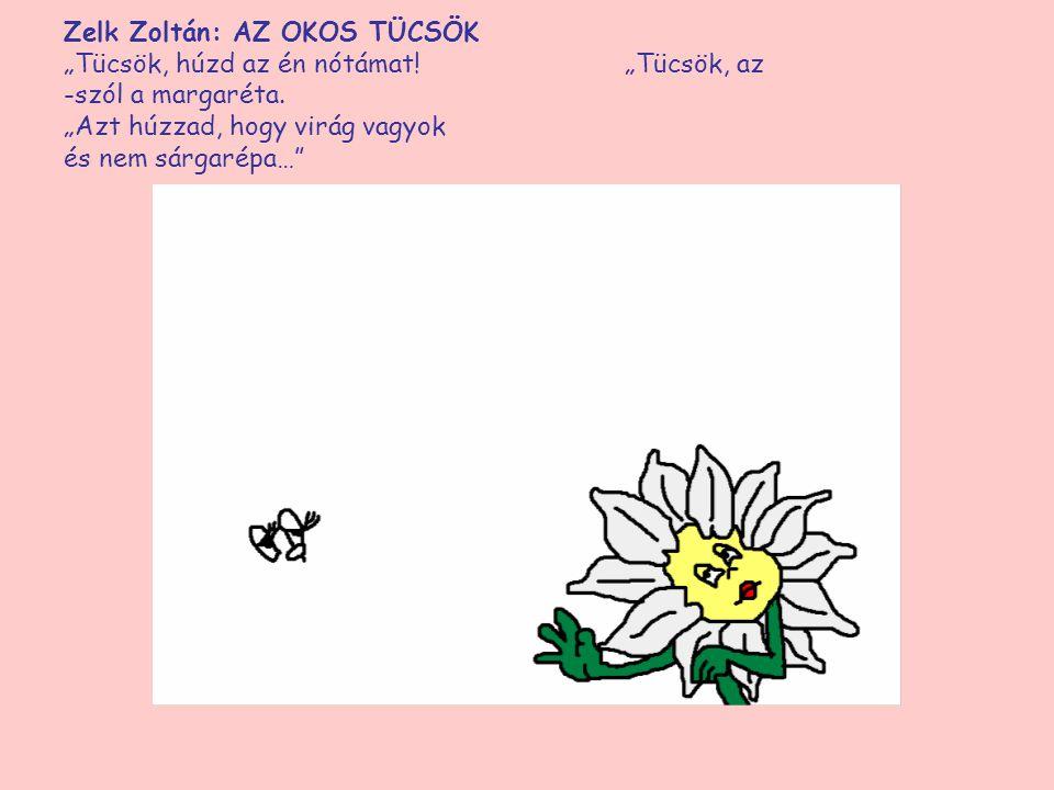 """Zelk Zoltán: AZ OKOS TÜCSÖK """"Tücsök, húzd az én nótámat! """"Tücsök, -szól a margaréta. """"Azt húzzad, hogy virág vagyok és nem sárgarépa…"""""""