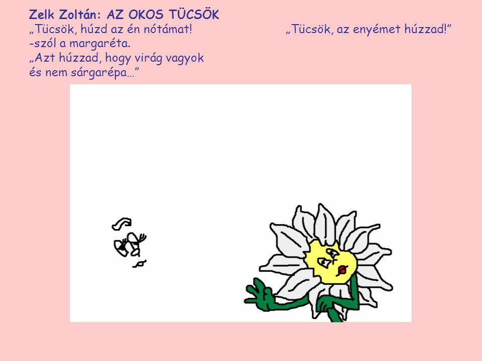 """Zelk Zoltán: AZ OKOS TÜCSÖK """"Tücsök, húzd az én nótámat! """"Tücsök, az enyémet -szól a margaréta. """"Azt húzzad, hogy virág vagyok és nem sárgarépa…"""""""