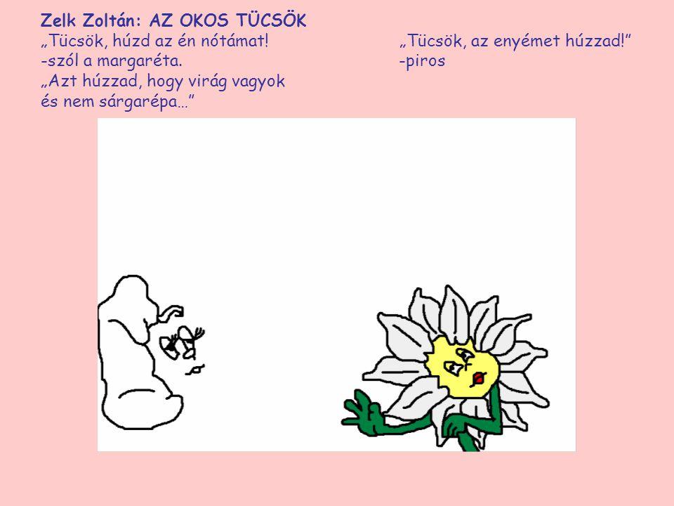"""Zelk Zoltán: AZ OKOS TÜCSÖK """"Tücsök, húzd az én nótámat! """"Tücsök, az enyémet húzzad!"""" -szól a margaréta. """"Azt húzzad, hogy virág vagyok és nem sárgaré"""